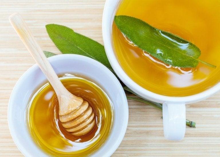 Coupures et éraflures : un remède à base de sauge et de miel