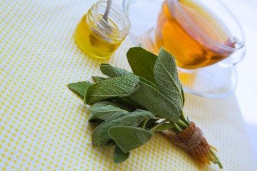 Un remède naturel à base de miel et de sauge pour soigner les éraflures