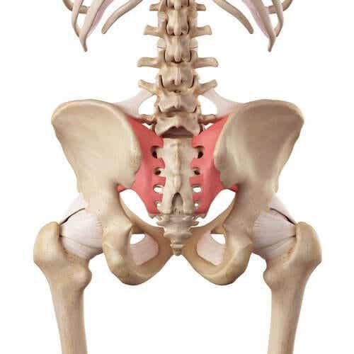 L'hypermobilité de l'articulation sacro-iliaque