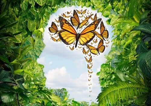 Un esprit empli de papillons, image représentant les effets de la logothérapie