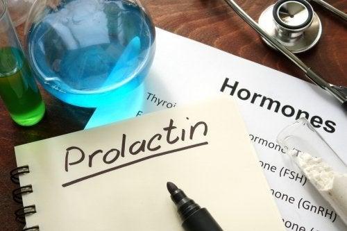 Prolactine : qu'est-ce que c'est et comment ça fonctionne ?