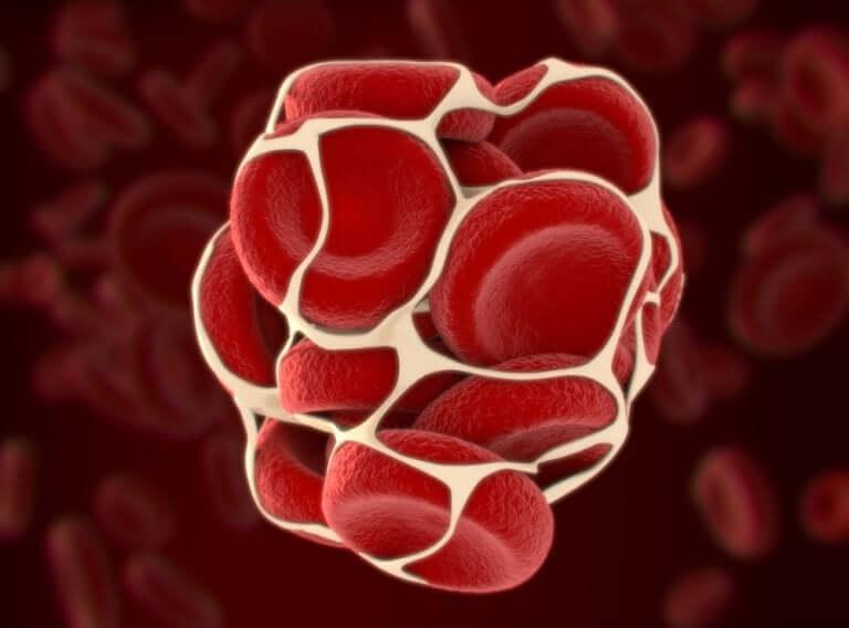 Le processus de la coagulation du sang