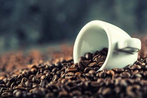 La caféine aide à maintenir la santé du cerveau
