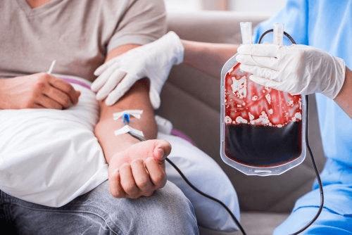 La transfusion sanguine, en quoi consiste-t-elle ?