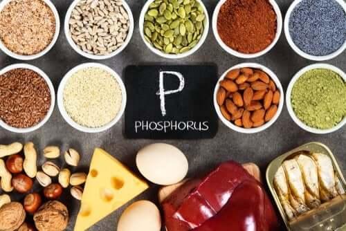 Hyperphosphatémie : causes et traitement