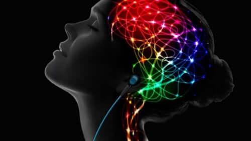 L'effet de l'escitalopram sur le cerveau