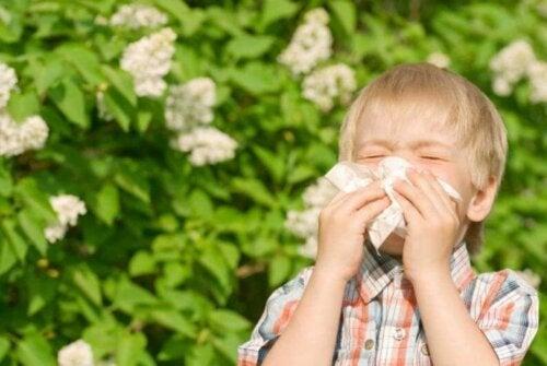 Un enfant ayant des allergies aux graminées