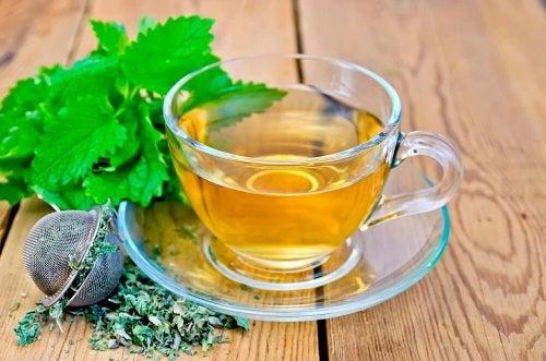 La mélisse fait partie des plantes médicinales efficaces contre le stress