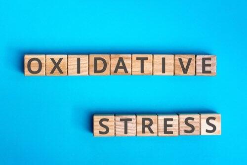 Stress oxydant : en quoi cela consiste ?