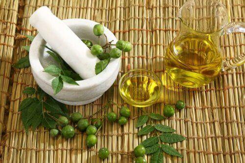 L'huile de neem est efficace pour hydrater vos cheveux
