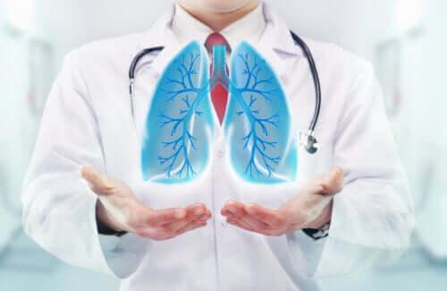 Effets de la respiration sur le cerveau