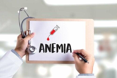 Les différences entre anémie ferriprive et carence en fer
