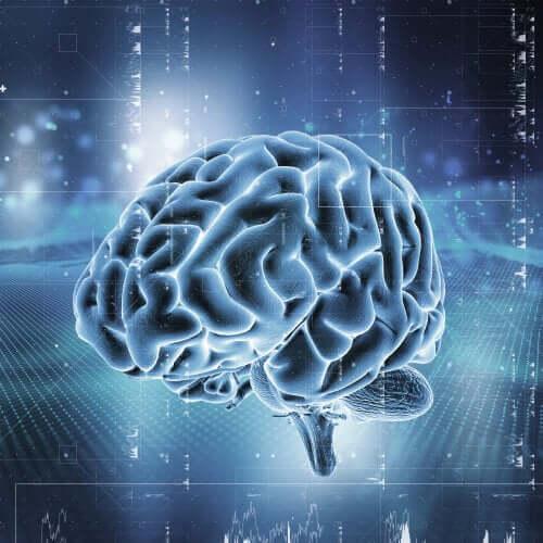 Un cerveau soumis à l'addiction aux opioïdes