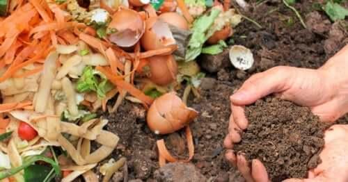Faire son propre compost permet de prendre soin de l'environnement