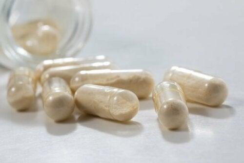 Les probiotiques et leurs effets