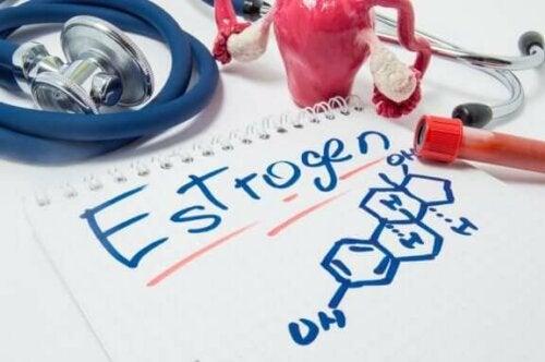 Les œstrogènes sont des hormones sexuelles