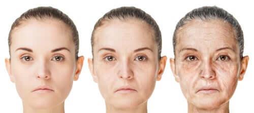 A quel âge commençons-nous à vieillir ?