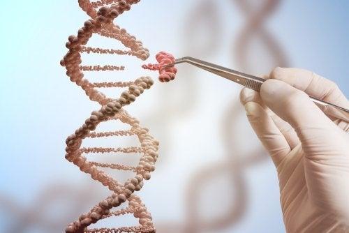 Les mutations génétiques de la chaîne de l'ADN