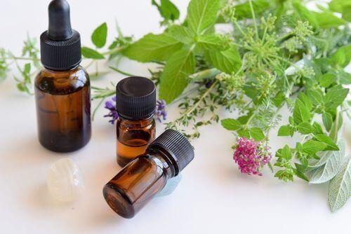 Lutter contre la candidose orale grâce à l'huile d'origan