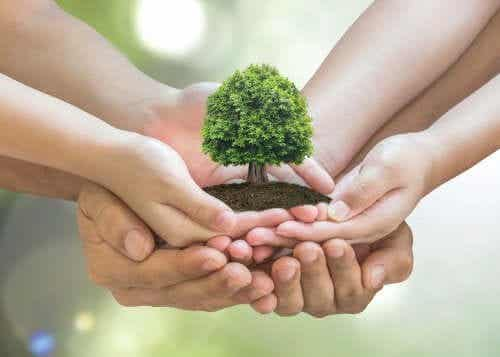 10 astuces pour prendre soin de l'environnement