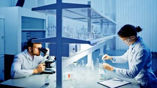 Deux chercheurs dans un laboratoire qui analysent les souches du coronavirus