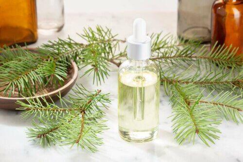 L'huile essentielle de pin pour soulager les rhumes