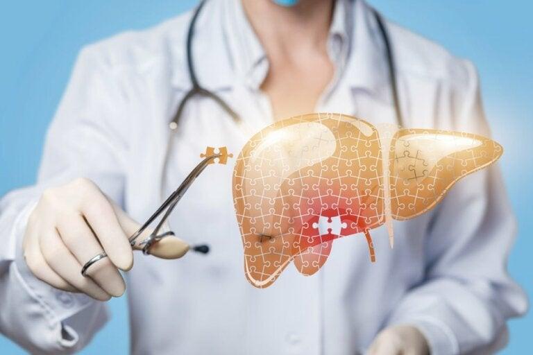 Les maladies du foie