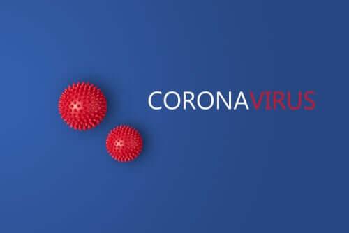 Une nouvelle étude suggère qu'il y a deux types de souches du coronavirus