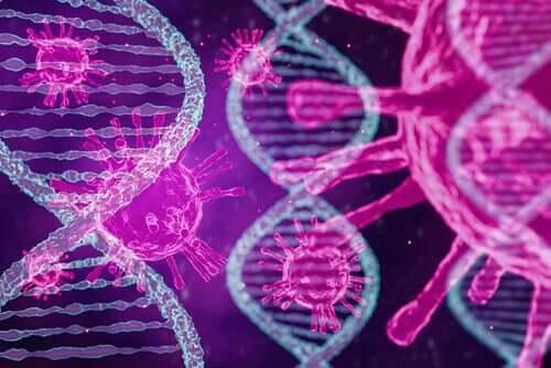 Une étude confirme l'existence de trois types de coronavirus dans le monde