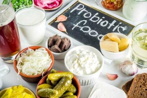 Quelle est la différence entre les prébiotiques et les probiotiques ?