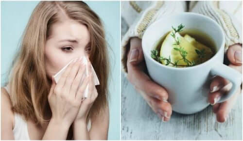 Des plantes et infusions pour soulager la toux associée au rhume