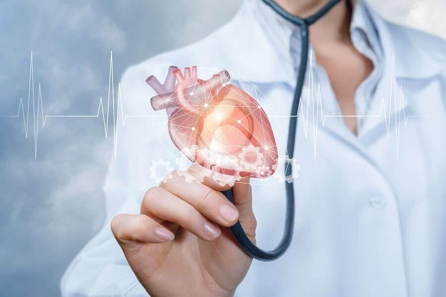 Le thé matcha contre les maladies cardiovasculaires