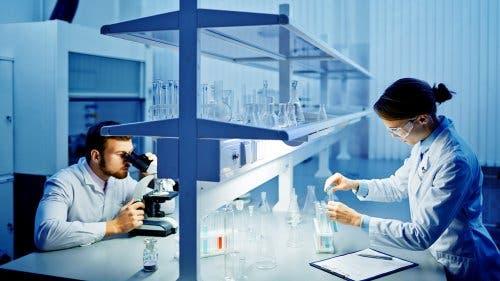 Deux chercheurs dans un laboratoire étudiant comment limiter les dommages cérébraux