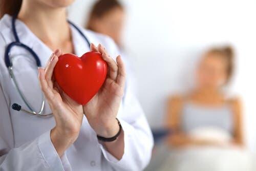 La santé cardiovasculaire est essentielle