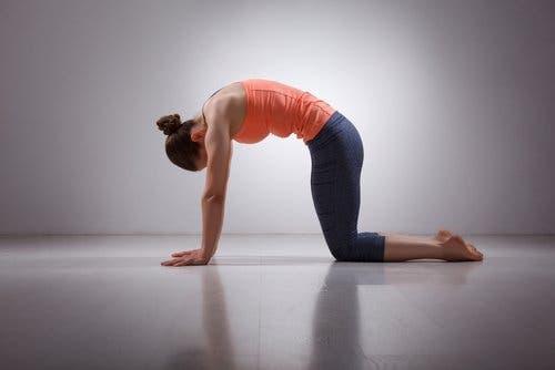 Faire des étirements du dos pour limiter les douleurs lombaires