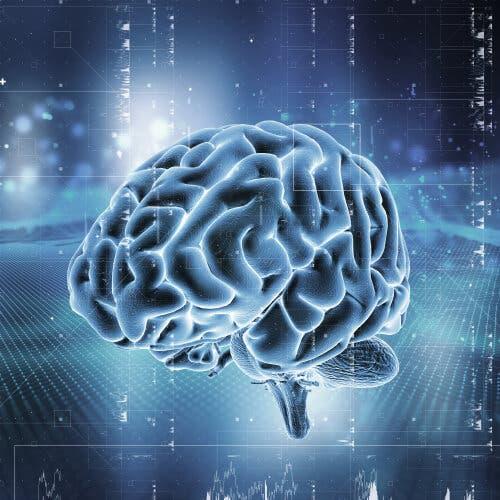 Un cerveau touché par une tumeur cérébrale