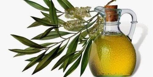 L'huile d'arbre à thé contre la dermatite séborrhéique