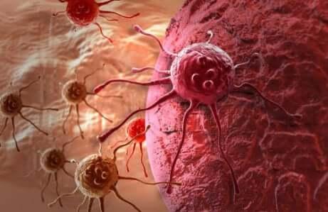 Le régime alcalin et le cancer