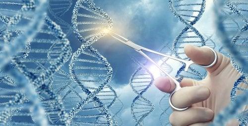 L'ADN et le syndrome de Zellweger