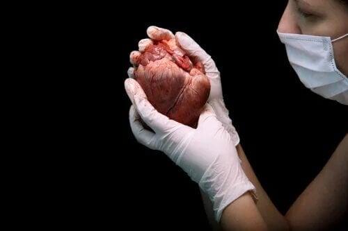 En quoi consiste la transplantation cardiaque ?