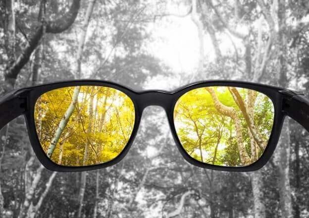 La vision chromatique déficiente ou le daltonisme : les causes