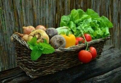 Alimentation pour les personnes atteintes d'un cancer