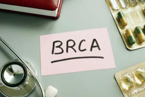 BRCA et ablation des ovaires.