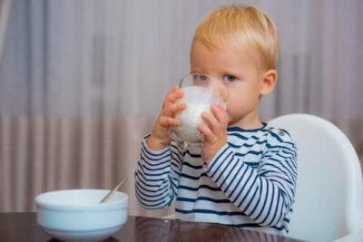 Quel est le meilleur lait pour les enfants après un an ?