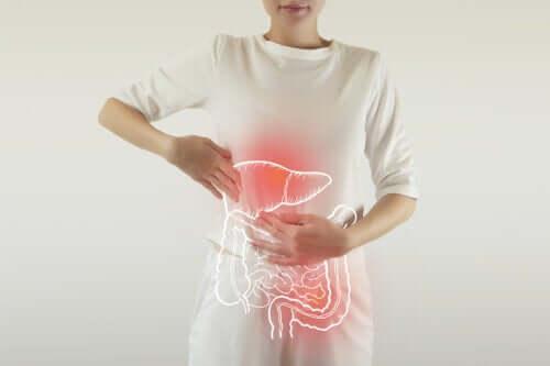 Enzymes digestives: à quoi servent-elles?