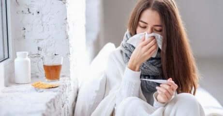 Le sureau contre le rhume et la grippe.