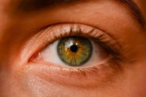 Nævus oculaires : sont-ils dangereux ?