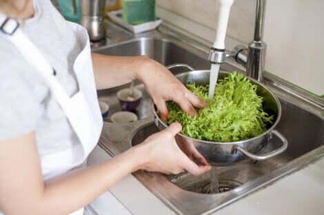 Bien laver les aliments pour éviter la contamination croisée.
