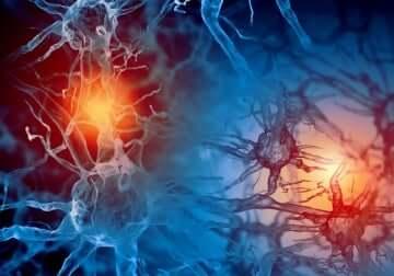 Des connexions neuronales.