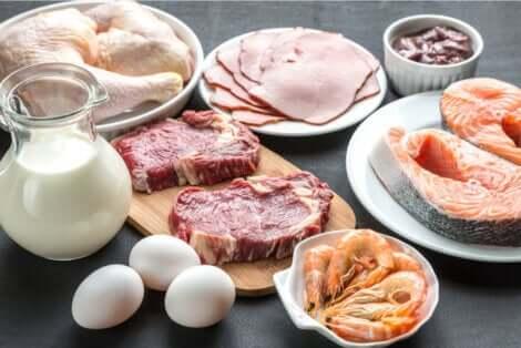 Les protéines peuvent être de source animale.
